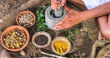 alaya-natura-alquimia-naturaleza-salud